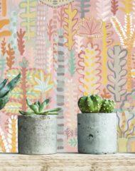 Miami_cactus background